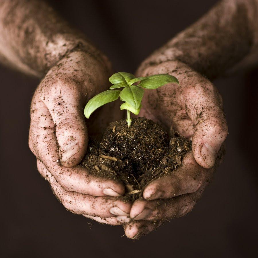 http://www.gardenersnotmechanics.com